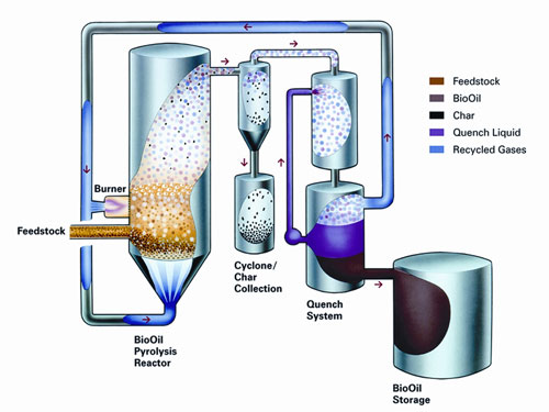 bio-oil1_f